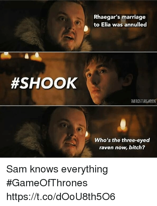 ravenous: Rhaegar's marriage  to Elia was annulled  #SHOOK  THATLOSTARGARYEN  Who's the three-eyed  raven now, bitch? Sam knows everything #GameOfThrones https://t.co/dOoU8th5O6