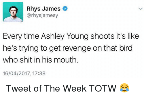 Memes, Revenge, and Shit: Rhys James  @rhysjamesy  Every time Ashley Young shoots it's like  he's trying to get revenge on that bird  who shit in his mouth.  16/04/2017, 17:38 Tweet of The Week TOTW 😂
