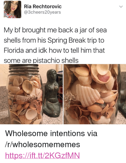 """Spring Break, Break, and Florida: Ria Rechtorovic  @3cheers20years  My bf brought me back a jar of sea  shells from his Spring Break trip to  Florida and idk how to tell him that  some are pistachio shells <p>Wholesome intentions via /r/wholesomememes <a href=""""https://ift.tt/2KGzfMN"""">https://ift.tt/2KGzfMN</a></p>"""
