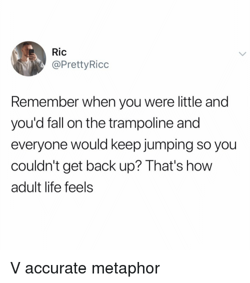 Metaphor: Ric  @PrettyRicc  Remember when you were little and  you'd fall on the trampoline and  everyone would keep jumping so you  couldn't get back up? That's how  adult life feels V accurate metaphor