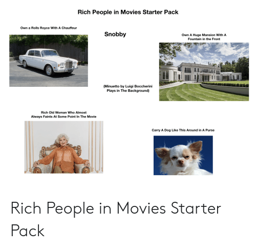 chauffeur: Rich People in Movies Starter Pack  Own a Rolls Royce With A Chauffeur  Snobby  Own A Huge Mansion With A  Fountain in the Front  (Minuetto by Luigi Boccherini  Plays in The Background)  Rich Old Woman Who Almost  Always Faints At Some Point In The Movie  Carry A Dog Like This Around in A Purse Rich People in Movies Starter Pack