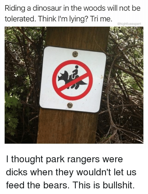 dinosaure: Riding a dinosaur in the woods will not be  tolerated. Think l'm lying? Tri me.  @highfiveexpert I thought park rangers were dicks when they wouldn't let us feed the bears. This is bullshit.