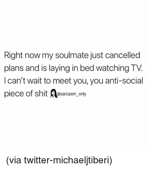 Anti Social: Right now my soulmate just cancelled  plans and is laying in bed watching TV.  l can't wait to meet you, you anti-social  piec  e of shit @sarcasm_only (via twitter-michaeljtiberi)