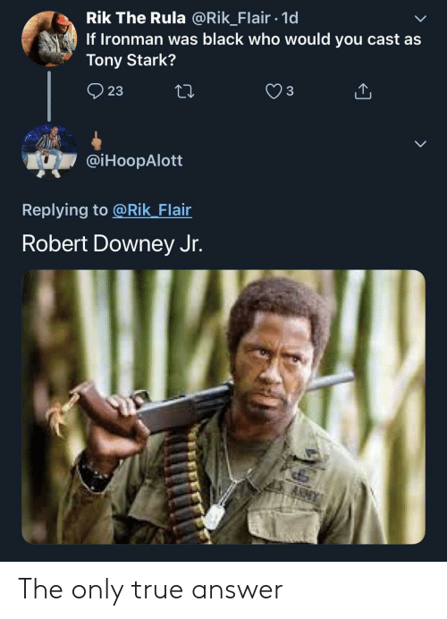 Robert Downey Jr: Rik The Rula @Rik_Flair 1d  If Ironman was black who would you cast as  Tony Stark?  23  @iHoopAlott  Replying to @Rik Flair  Robert Downey Jr. The only true answer