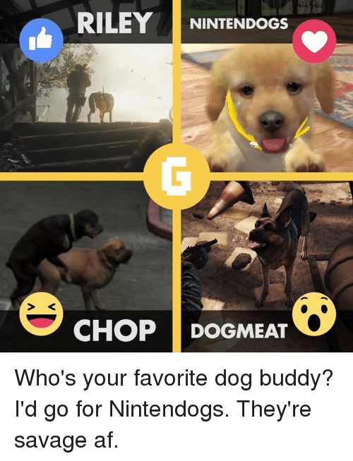 Af, Dogs, and Savage: RILEY  NINTENDOGS  CHOP DOGMEAT Who's your favorite dog buddy? I'd go for Nintendogs. They're savage af.