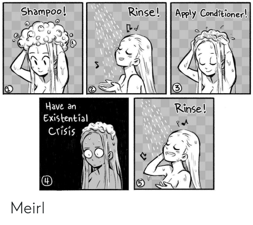 existential: Rinse! Apply Cond?tioner!  Shampoo!  3)  Have an  Existential  crisis  Rinse!  (4) Meirl
