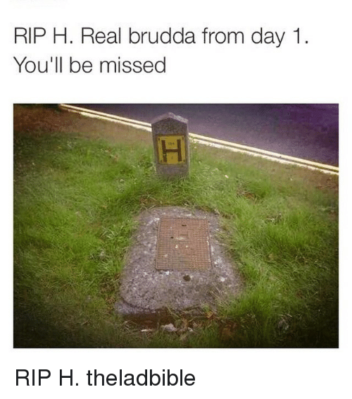 Memes, 🤖, and Rip: RIP H. Real brudda from day 1  You'll be missed RIP H. theladbible