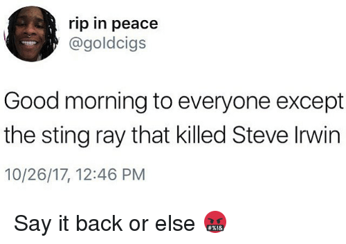Steve Irwin, Say It, and Good Morning: rip in peace  @goldcigs  Good morning to everyone except  the sting ray that killed Steve Irwin  10/26/17, 12:46 PM Say it back or else 🤬