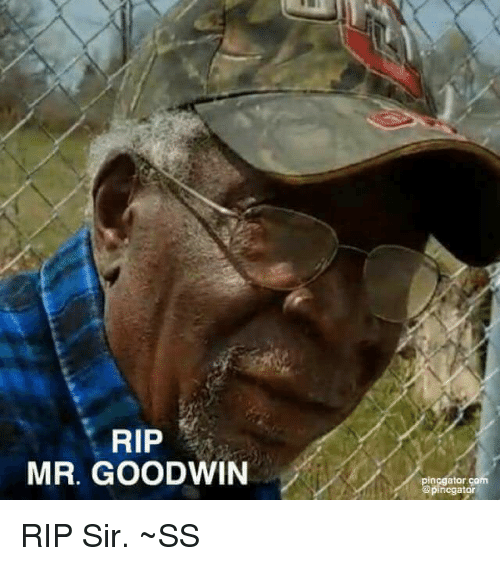 Memes, 🤖, and Com: RIP  MR. GOODWIN  pinggator com  @pincgator RIP Sir.  ~SS