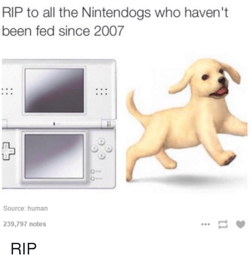 Dank, Humanity, and All The: RIP to all the Nintendogs who haven't  been fed since 2007  Source: human  239,797 notes RIP