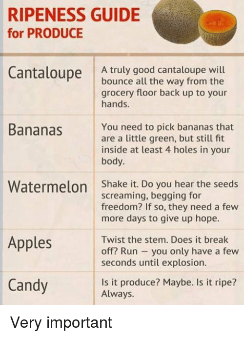 Funny, Twisted, and Watermelon: RIPENESS GUIDE  for PRODUCE  Cantaloupe  A truly good cantaloupe will  bounce all the way from the  grocery floor back up to your  hands.  Bananas  You need to pick bananas that  are a little green, but still fit  inside at least 4 holes in your  body  Watermelon  Shake it. Do you hear the seeds  screaming, begging for  freedom? If so, they need a few  more days to give up hope.  Twist the stem. Does it break  Apples  off? Run you only have a few  seconds until explosion.  Candy  Is it produce? Maybe. Is it ripe?  Always. Very important