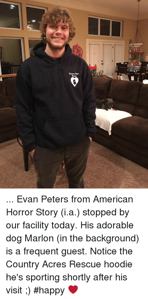 Evan Peters: Ripon ... Evan Peters from American Horror Story (i.a.) stopped by our facility today.  His adorable dog Marlon (in the background) is a frequent guest.  Notice the Country Acres Rescue hoodie he's sporting shortly after his visit ;) #happy ❤