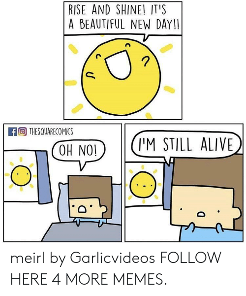 Rise And Shine: RISE AND SHINE! IT'S  A BEAUTIFUL NEW DAY!!  A THESQUARECO MICS  COH NO(I'M STILL ALIVE meirl by Garlicvideos FOLLOW HERE 4 MORE MEMES.