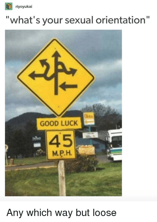 """Good, Luck, and Whats: riyoyukai  """"what's your sexual orientation""""  GOOD LUCK  45  MPH Any which way but loose"""