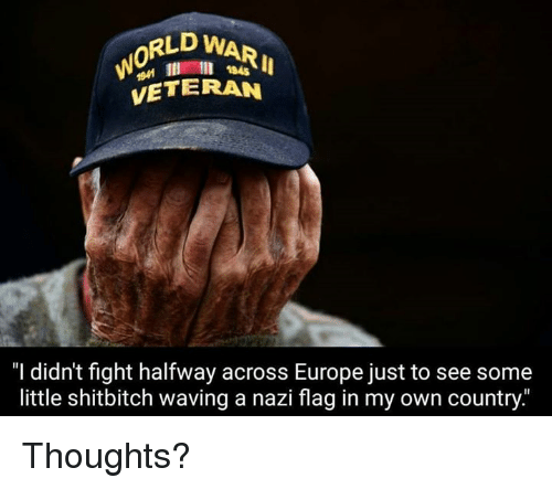 """Nazy: RLD WAR  VETERAN  1945  """"I didn't fight halfway across Europe just to see some  little shitbitch waving a nazi flag in my own country."""" Thoughts?"""