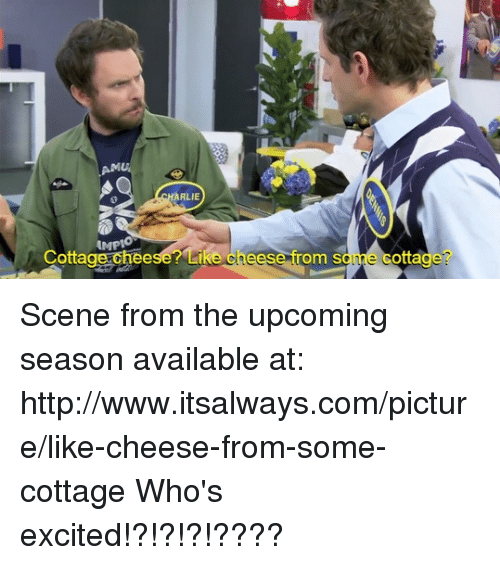 cottage cheese: RLIE  AMPIO  Cottage cheese? Li  eese  rom S  otta Scene from the upcoming season available at: http://www.itsalways.com/picture/like-cheese-from-some-cottage  Who's excited!?!?!?!????