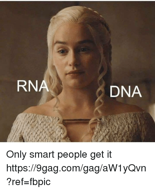 9gag, Dank, and 🤖: RNA  DNA Only smart people get it https://9gag.com/gag/aW1yQvn?ref=fbpic