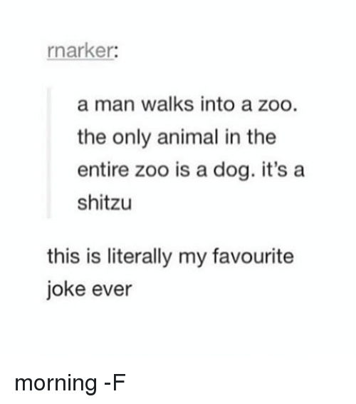 Relatable, Zoo, and Dog: rnarker:  a man walks into a zoo.  the only animal in the  entire zoo is a dog. it's a  shitzu  this is literally my favourite  joke ever morning -F