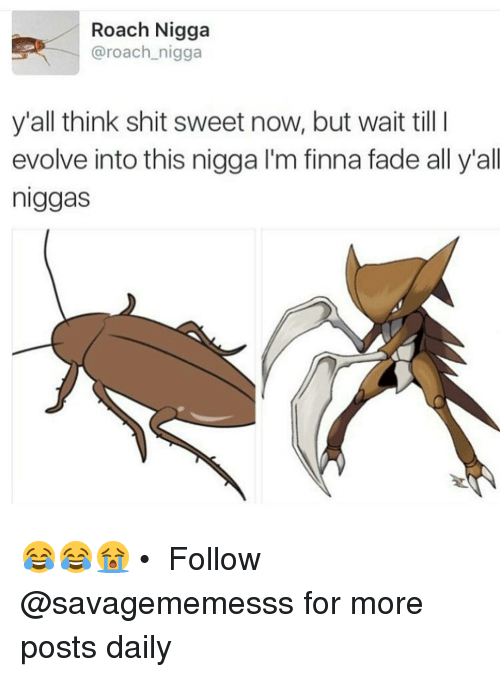 Memes, Shit, and Faded: Roach Nigga  @roach nigga  y'all think shit sweet now, but wait till I  evolve into this nigga l'm finna fade all y'all  niggas 😂😂😭 • ➫➫ Follow @savagememesss for more posts daily