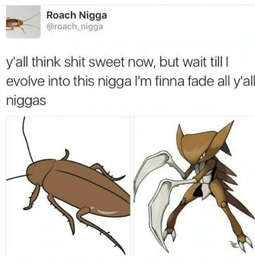 Faded, Finna, and Roach: Roach Nigga  @roach nigga  y'all think shit sweet now, but wait till l  evolve into this nigga l'm finna fade all y'all  niggas