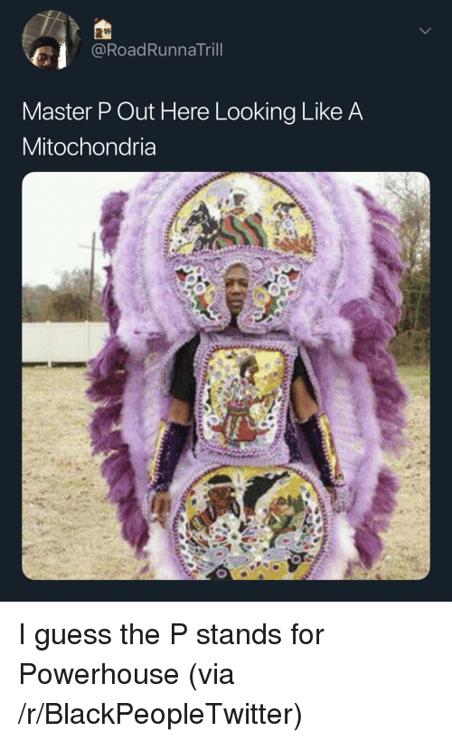Mitochondria: @RoadRunnaTril  Master P Out Here Looking Like A  Mitochondria I guess the P stands for Powerhouse (via /r/BlackPeopleTwitter)