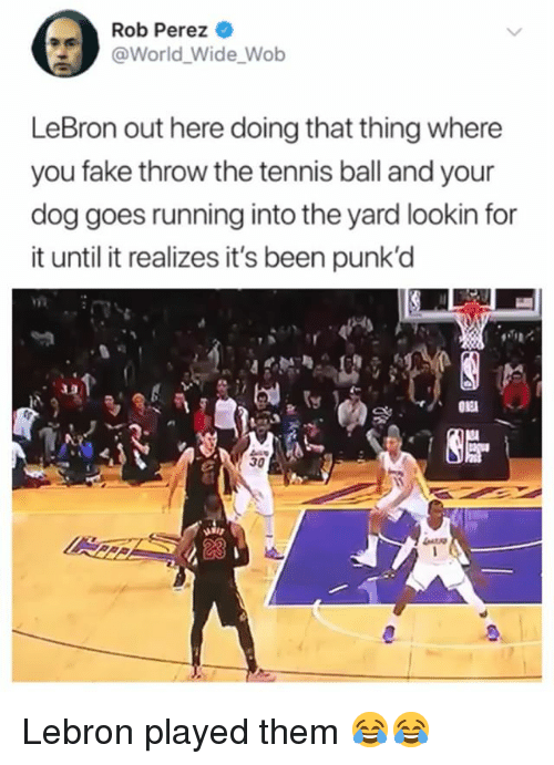 Fake, Funny, and Lebron: Rob Perez  @World Wide Wob  LeBron out here doing that thing where  you fake throw the tennis ball and your  dog goes running into the yard lookin for  it until it realizes it's been punk'd Lebron played them 😂😂