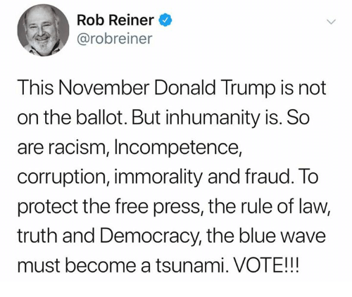 incompetence: Rob Reiner  @robreiner  This November Donald Trump is not  on the ballot. But inhumanity is. So  are racism, Incompetence,  corruption, immorality and fraud. To  protect the free press, the rule of law,  truth and Democracy, the blue wave  must become a tsunami. VOTE!!!