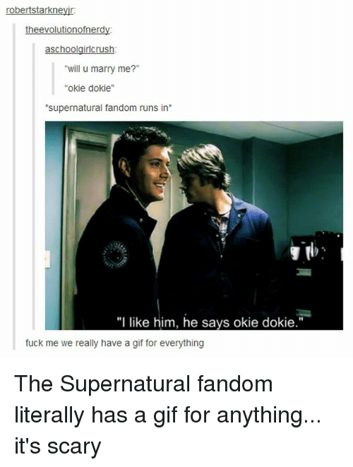 """okie dokie: robertstarkneyir.  the evolutionofnerd  schoo  rlcrush  """"will u marry me?""""  okie dokie  'supernatural fandom runs in  """"I like him, he says okie dokie.""""  fuck me we really have a gif for everything The Supernatural fandom literally has a gif for anything... it's scary"""