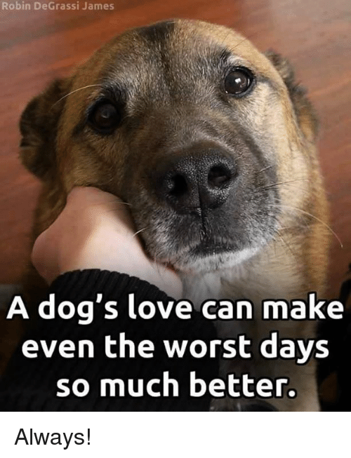 Degrassi: Robin DeGrassi James  A dog's love can make  even the worst days  so much better. Always!