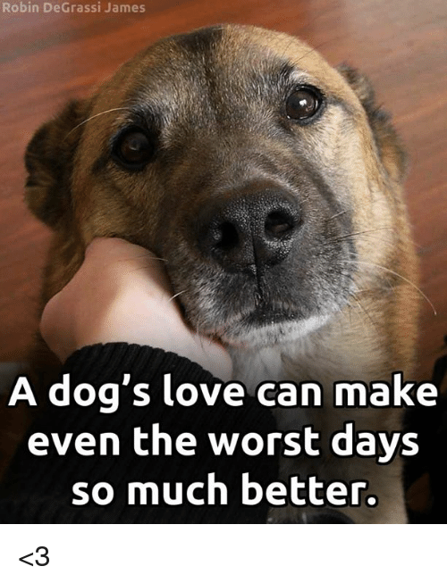 Degrassi: Robin DeGrassi James  A dog's love can make  even the worst days  so much better. <3