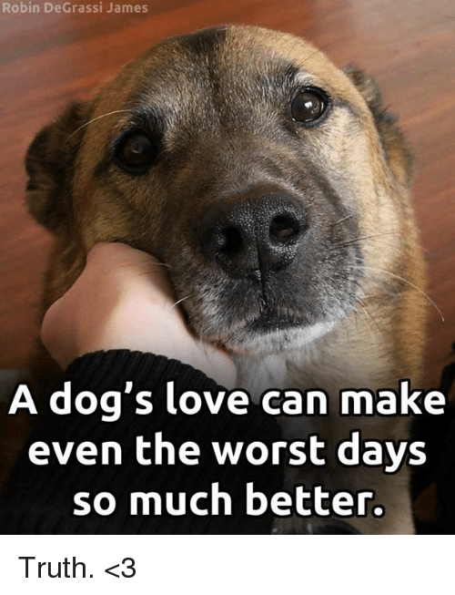 Degrassi: Robin DeGrassi James  A dog's love can make  even the worst days  so much better. Truth. <3