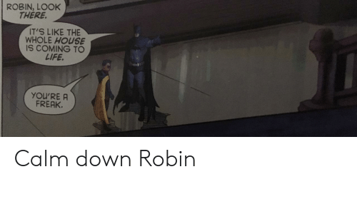 freak: ROBIN, LOOK  THERE.  IT'S LIKE THE  WHOLE HOUSE  IS COMING TO  LIFE.  YOU'RE A  FREAK. Calm down Robin