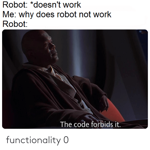functionality: Robot: *doesn't work  Me: why does robot not work  Robot:  The code forbids it. functionality 0