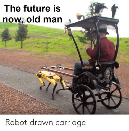 drawn: Robot drawn carriage
