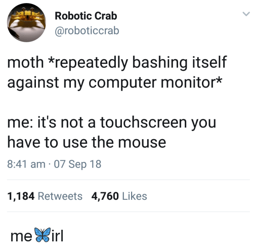 Robotic: Robotic Crab  @roboticcrab  moth *repeatedly bashing itself  against my computer monitor*  me: it's not a touchscreen you  have to use the mouse  8:41 am 07 Sep 18  1,184 Retweets 4,760 Likes me🦋irl
