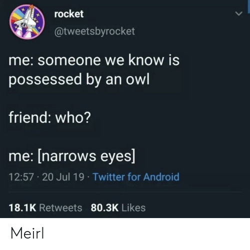 who me: rocket  @tweetsbyrocket  me:someone we know is  possessed by an owl  friend: who?  me: [narrows eyes]  12:57 20 Jul 19 Twitter for Android  18.1K Retweets 80.3K Likes Meirl