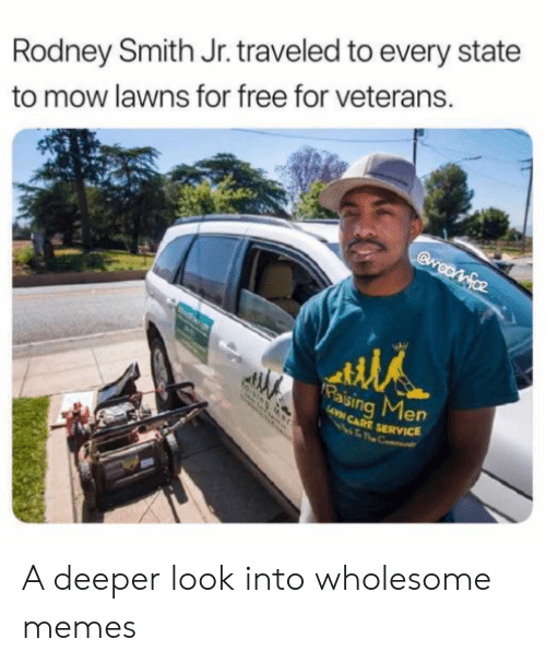 Veterans: Rodney Smith Jr. traveled to every state  to mow lawns for free for veterans.  Gwootfoz  Paising Men  AVN CARE SERVICE A deeper look into wholesome memes
