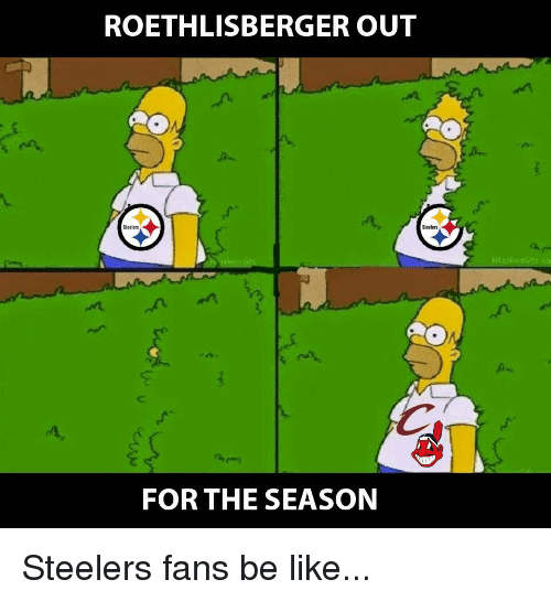 steelers fans be like: ROETHLISBERGER OUT  Steelers  Steelers  AO  FOR THE SEASON Steelers fans be like...