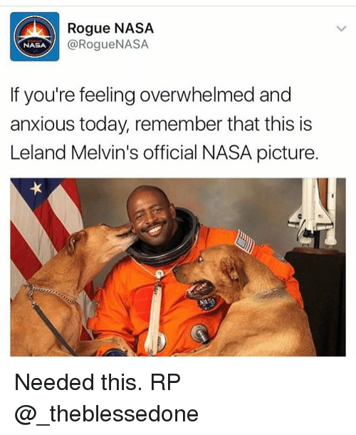 melvins: Rogue NASA  @Rogue NASA  NASA  If you're feeling overwhelmed and  anxious today, remember that this is  Leland Melvin's official NASA picture. Needed this. RP @_theblessedone