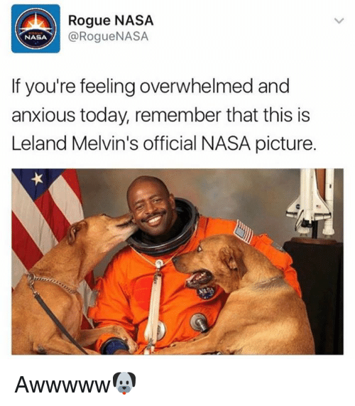 melvins: Rogue NASA  @Rogue NASA  NASA  If you're feeling overwhelmed and  anxious today, remember that this is  Leland Melvin's official NASA picture. Awwwww🐶