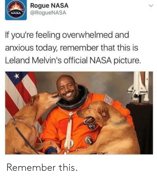 melvins: Rogue NASA  @RogueNASA  NASA  If you're feeling overwhelmed and  anxious today, remember that this is  Leland Melvin's official NASA picture. Remember this.