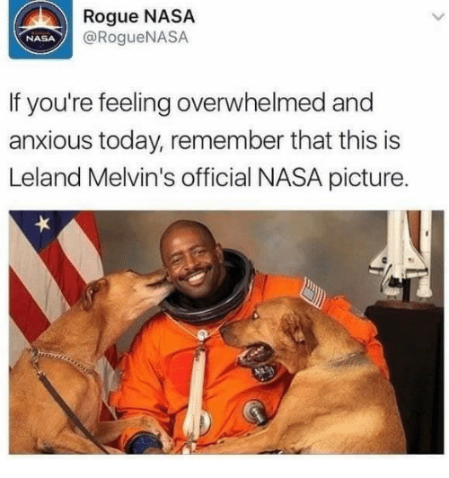 melvins: Rogue NASA  @RogueNASA  NASA  If you're feeling overwhelmed and  anxious today, remember that this is  Leland Melvin's official NASA picture.