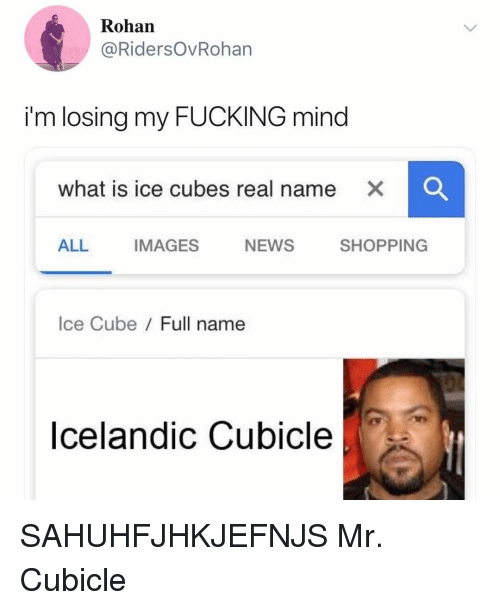Ice Cube: Rohan  @RidersOvRoharn  im losing my FUCKING mind  what is ice cubes real name X  ALL IMAGES NEWS SHOPPING  Ice Cube/ Full name  Icelandic Cubicle SAHUHFJHKJEFNJS Mr. Cubicle