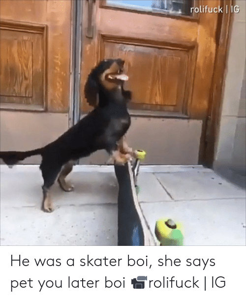 Skater: rolifuck IG He was a skater boi, she says pet you later boi  📹rolifuck | IG