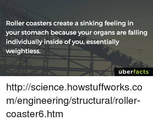 Memes, Uber, and Engineering: Roller coasters create a sinking feeling in  your stomach because your organs are falling  individually inside of you, essentially  weightless.  uber  facts http://science.howstuffworks.com/engineering/structural/roller-coaster6.htm