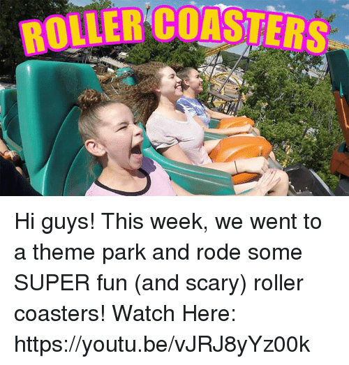 roller coasters: ROLLER COASTERS Hi guys! This week, we went to a theme park and rode some SUPER fun (and scary) roller coasters!   Watch Here: https://youtu.be/vJRJ8yYz00k