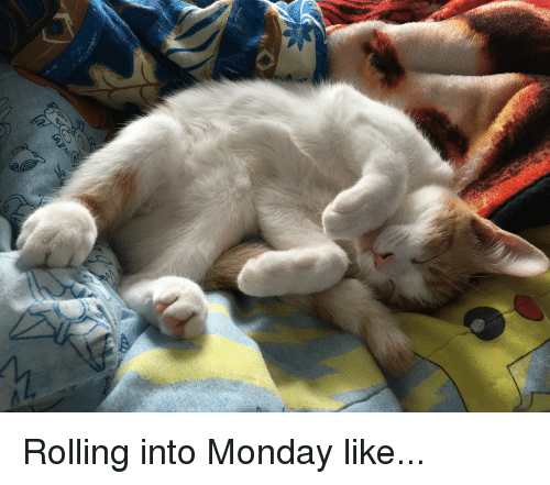 Monday, Like, and Cozy: Rolling into Monday like...