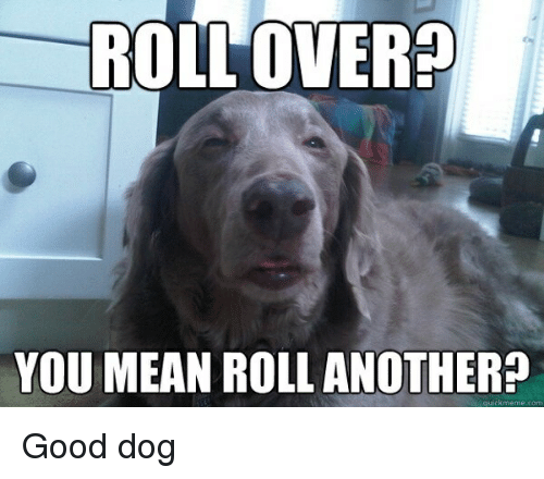 Dogs, Weed, and Good: ROLLOVER  YOU MEAN ROLL ANOTHER?  ckme me.com Good dog