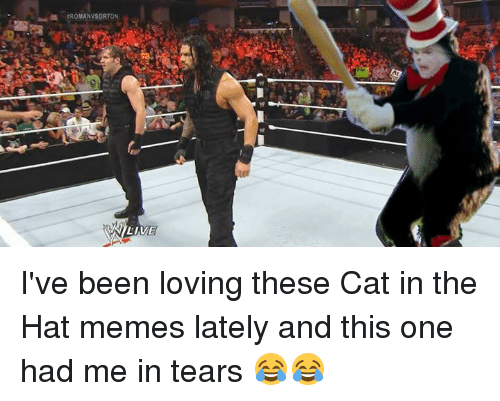Cats, Memes, and Roman: ROMAN VSORTON  VSILIVE I've been loving these Cat in the Hat memes lately and this one had me in tears 😂😂
