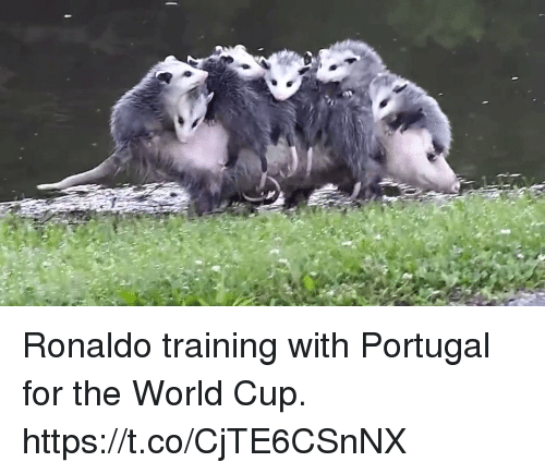 Soccer, World Cup, and Portugal: Ronaldo training with Portugal for the World Cup. https://t.co/CjTE6CSnNX